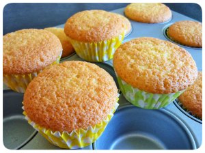 Vanilla cupcakes just out of oven