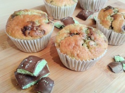 Mint chocolate muffins
