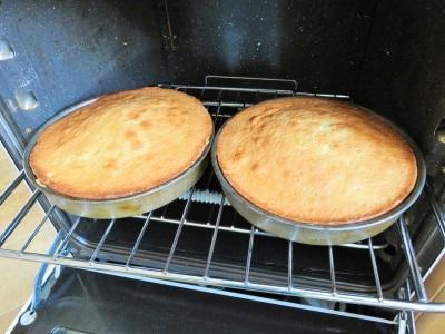 Freshly baked Lemon sponge layer cake with lemon curd and vanilla buttercream filling