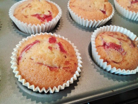 Raspberry ripple cupcakes freshly baked close up