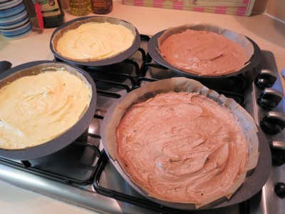 Chocolate and vanilla cake mixture in tins for layer cake