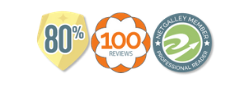 NetGalley 100 reviews 80 per cent badges for widget